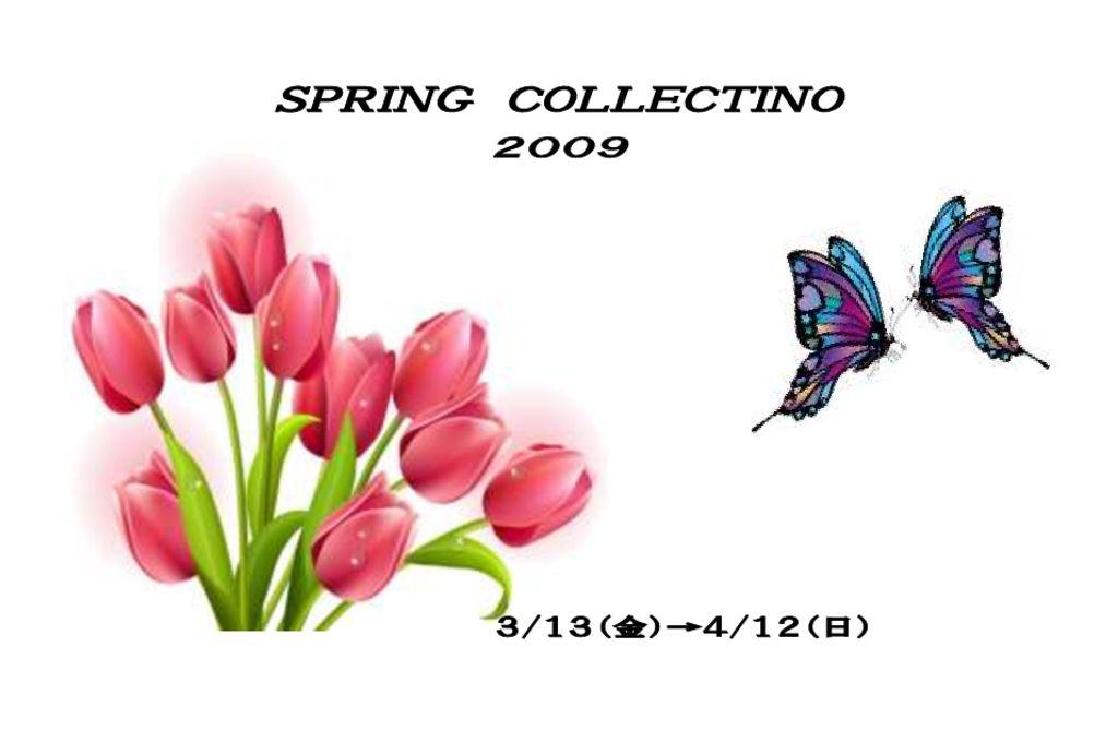 W01-21 2009春はがきのサムネイル
